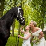 Bruidsmeisje paard trouwfotograaf natuur eindhoven