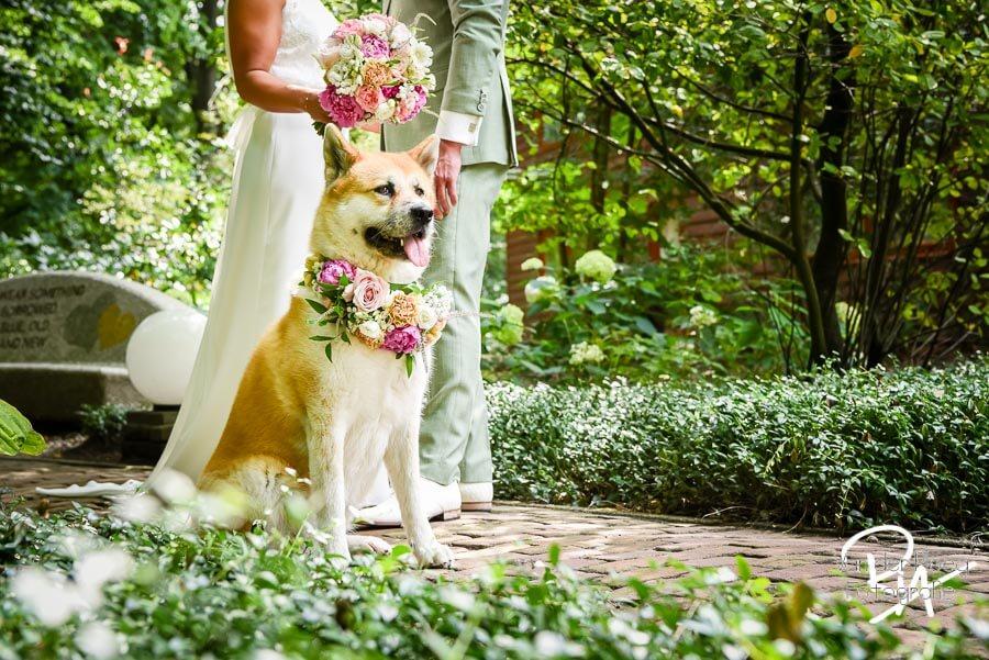 Fotograaf Oisterwijk hond bruiloft huwelijk